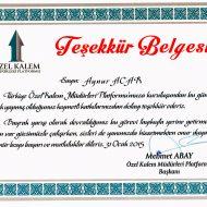 sertifika-02