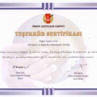 sertifika-17