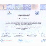 sertifika-30