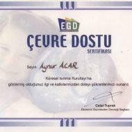 sertifika-31