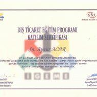 sertifika-34